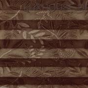 Samoa-003