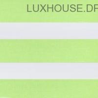 DN-Line-Green