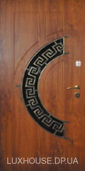 dveri_s_kovkoy_24