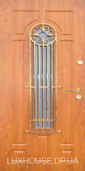 dveri_s_kovkoy_26