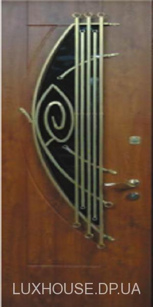 dveri_s_kovkoy_32