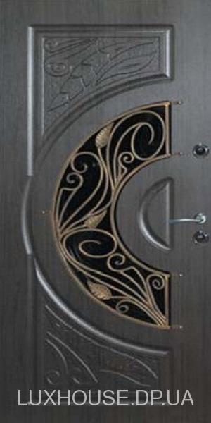 dveri_s_kovkoy_big_13
