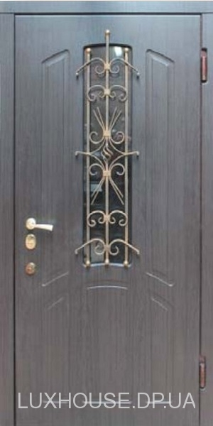 dveri_s_kovkoy_big_14
