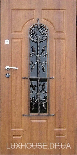 dveri_s_kovkoy_m31