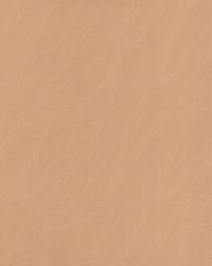 3026Дюнатемно-бежевый