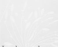 Fennel 8 White