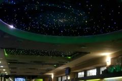 zvezdnoe-nebo10