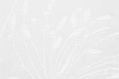 Fennel White