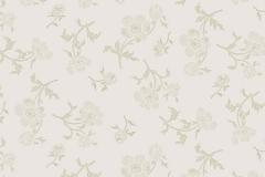 Begonia-Pearl