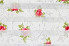 DN-Roses