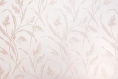 Sedge-Lilac